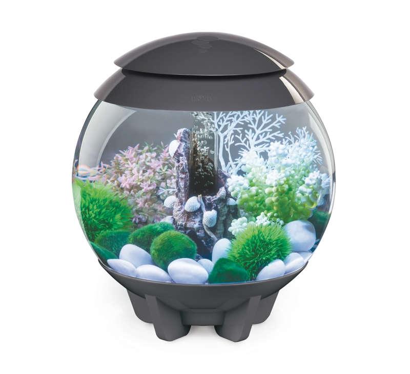 biorb aquarien online g nstig kaufen. Black Bedroom Furniture Sets. Home Design Ideas