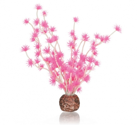 biOrb Bonsai Ball pink
