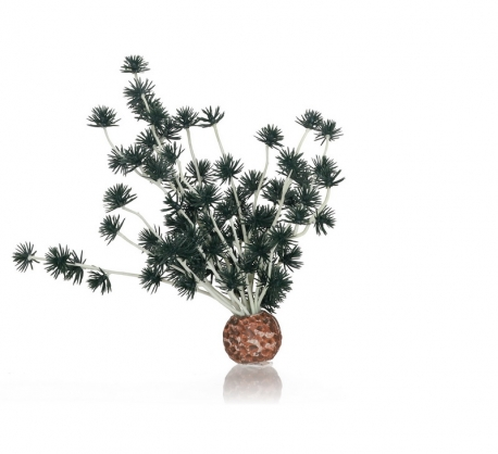 biOrb Bonsai Ball schwarz