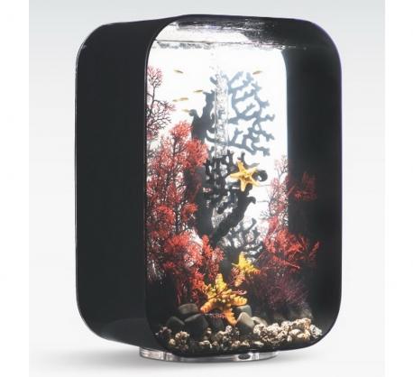 biOrb Deko Rezept 61107 für 60L Aquarien