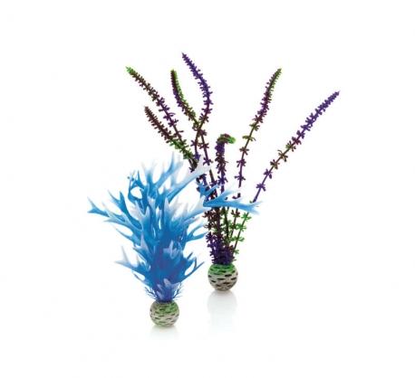 biOrb Pflanzen Set M blau & lila