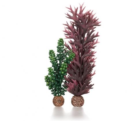 biOrb Seeperlen & Seetang olivgrün