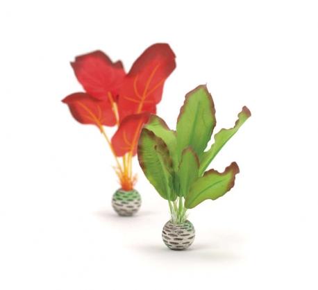 biOrb Seidenpflanzen Set L grün & rot