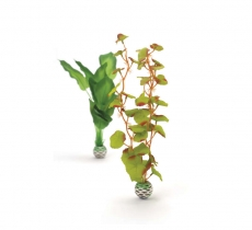 biOrb Seidenpflanzen Set M grün