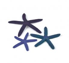 biOrb Seestern Set 3 blau