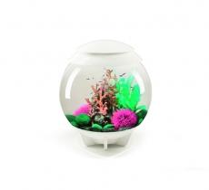 biOrb Deko Rezept 61101 für 30L Aquarien