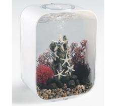 biOrb Deko Rezept 61108 für 15L Aquarien