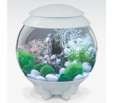 biOrb Deko Rezept 61110 für 15L Aquarien