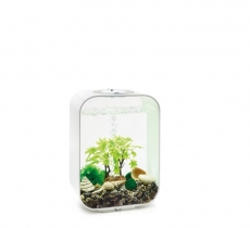 biOrb Decor Set 15L Sommer