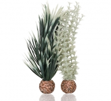 biOrb Ambulia grau/grün S