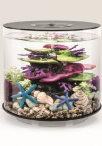 biOrb Deko Rezept 61399 für 15L Aquarien
