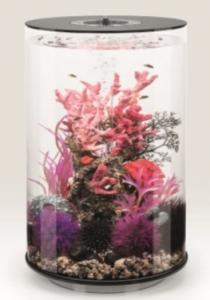 biOrb Deko Rezept 61401 für 30L Aquarien
