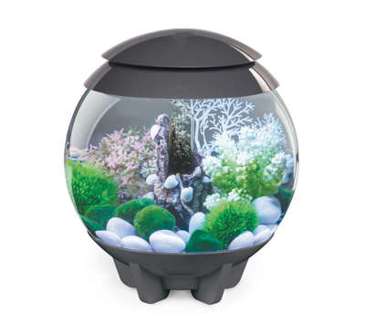 biorb aquarium alle modelle auf g nstig kaufen. Black Bedroom Furniture Sets. Home Design Ideas
